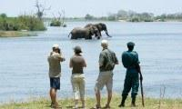 Walking safaris in Majete Wildlife Reserve